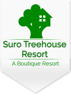 Luxury Resort in Shimla  | Suro Treehouse Resort